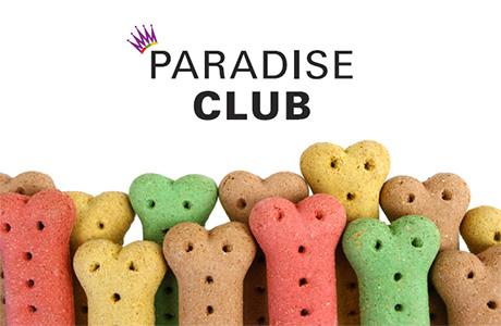 paradise4paws1